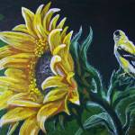 """""""Goldfinch and Sunflower"""" by foxbrush"""