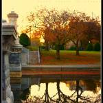 """Boston Public Garden"" by HarryLipson"