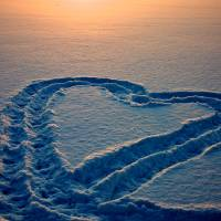 Snow Heart Art Prints & Posters by Lynn Armstrong