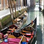 """Gondolas in Venetian Canal"" by lillisphotography"