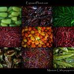 """Mexican Chili Peppers"" by ExposedPlanet"