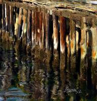 Wharf Reflections