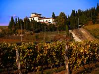 House on Tuscan Hill