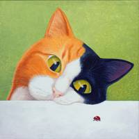 Cat and Ladybird