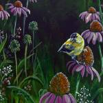 """Goldfinch and Coneflowers"" by foxbrush"