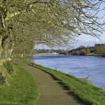 """Tow-path, river Suir, Carrick-on-Suir"" by rustyoldtown"