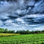 """Field of Dreams I"" by steveainsworthphotos"