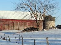 Wintery scene on the farm