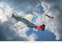 Red Tails - Tuskegee Airmen
