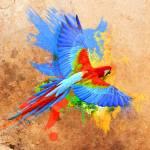 """Parrot"" by rick-reid"