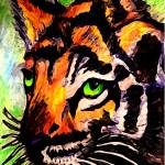 """Tiger Shock"" by Rosemary"