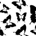 """""""Butterfly Parade Black"""" by ImageMonkey"""