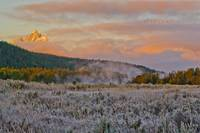 Frosty Meadow Sunrise