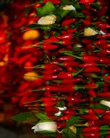 Hot Peppers Venice