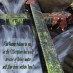 """The Cross In The Culvert_with Scripture"" by barbsummering"