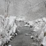 """Brewster Herring Run In The Winter"" by digitallooks"