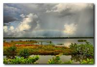 Salt Marsh  Rainbow HDR