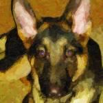 """Custom German Shepherd Canvas"" by Lemonjello"