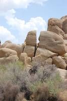 Rock of Joshua Tree National Park