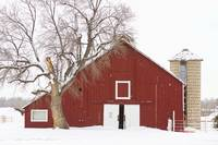 Red Barn Winter Country Landscape