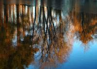 Upton Winter Reflections