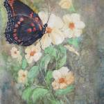 """Red Admiral Butterfly"" by Mesterartshop"