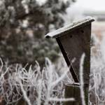 """Birdhouse in the frost"" by WaynePhotoGuy"