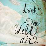 """Wild Air"" by sarahcarterstudio"