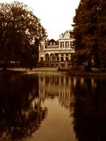 Reflections in Vondelpark