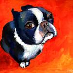 """boston terrier gouache"" by SvetlanaNovikova"