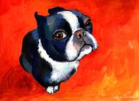 boston terrier gouache