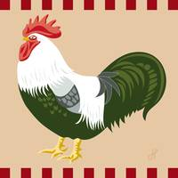 Rooster Silver Grey Dorking