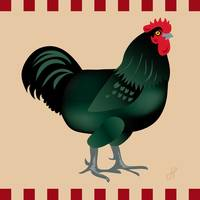 Rooster Giant Black