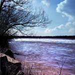 """Spring Harmony II"" by OceanBlack"