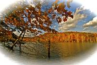 'Autumn On The Lake