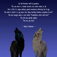 Tale of Two Wolves by I.M. Spadecaller
