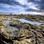 """""""Ocean terrain-4"""" by versaillesexquisites"""