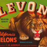 """Levon Melons Lion Fruit Crate Label"" by lifeoverhere"