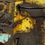 """Yellow Rust Explosion #2"" by KilbyCreative"