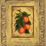 """Italian Apricots"" by marilyndunlap"