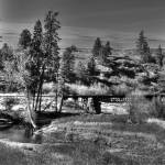 """Bridge Over Creek Black And White"" by OneRudeDawg"