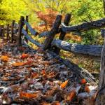 """""""Parkway Fence"""" by mtn-images"""