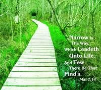Narrow Path