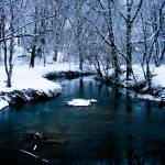 """Icy stream"" by MyTreasuredImages"