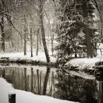 """""""Winter in the park"""" by MyTreasuredImages"""