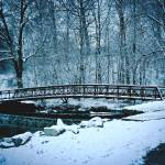"""Icy foot bridge"" by MyTreasuredImages"