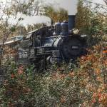 """""""Huckleberry Railroad"""" by ScottHovind"""
