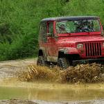 """Playing in the Mud"" by ScottHovind"