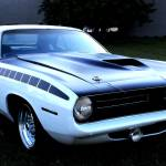 """Cuda"" by ScottHovind"
