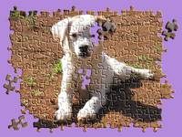 puppy jigsaw copy